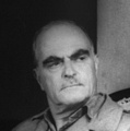 Inspirational Quotations by Thornton Wilder (American Novelist, Dramatist)