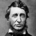 Inspirational Quotations by Henry David Thoreau (American Philosopher)